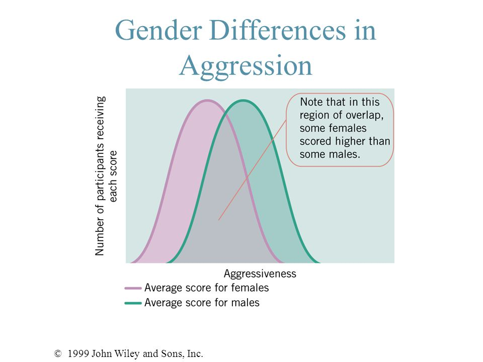 Gender Differences in Aggression © 1999 John Wiley and Sons, Inc.