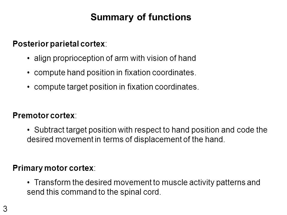 3 Summary of functions Posterior parietal cortex: align proprioception of arm with vision of hand compute hand position in fixation coordinates.