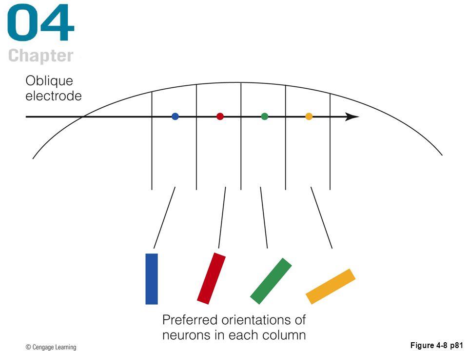 Figure 4-8 p81