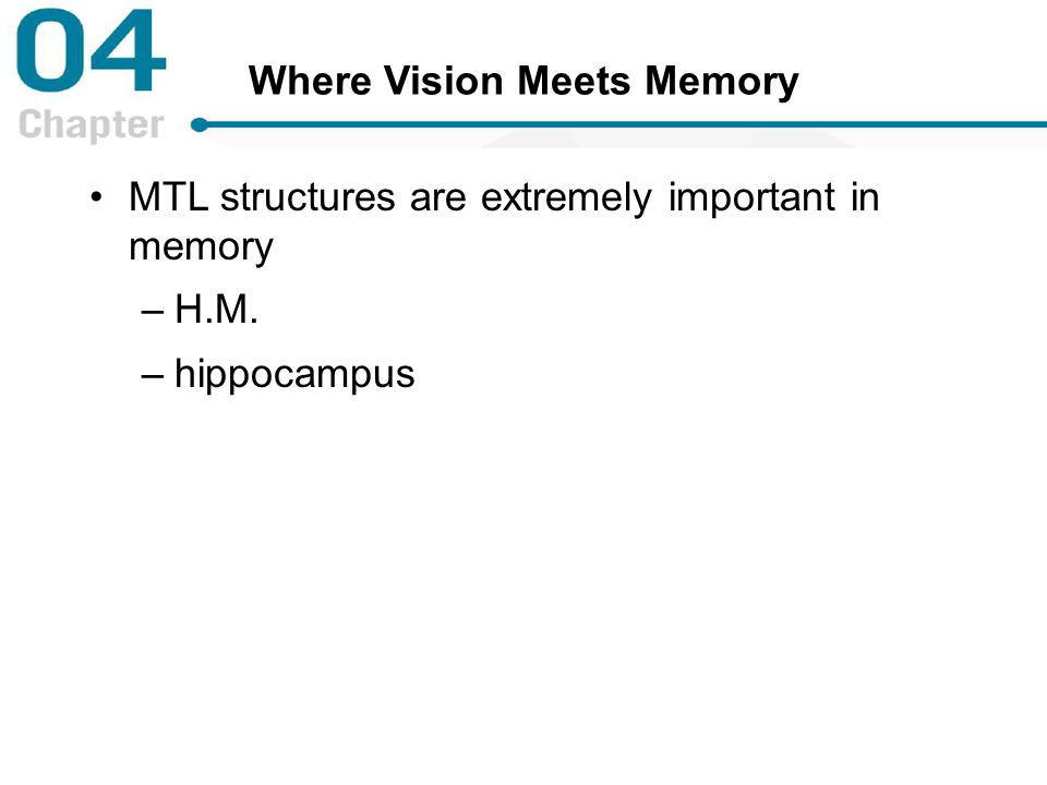 Where Vision Meets Memory MTL structures are extremely important in memory –H.M. –hippocampus