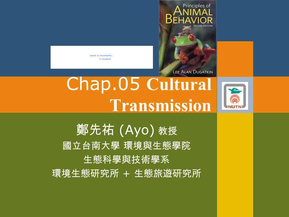 Chap.05 Cultural Transmission 鄭先祐 (Ayo) 教授 國立台南大學 環境與生態學院 生態科學與技術學系 環境生態研究所 + 生態旅遊研究所