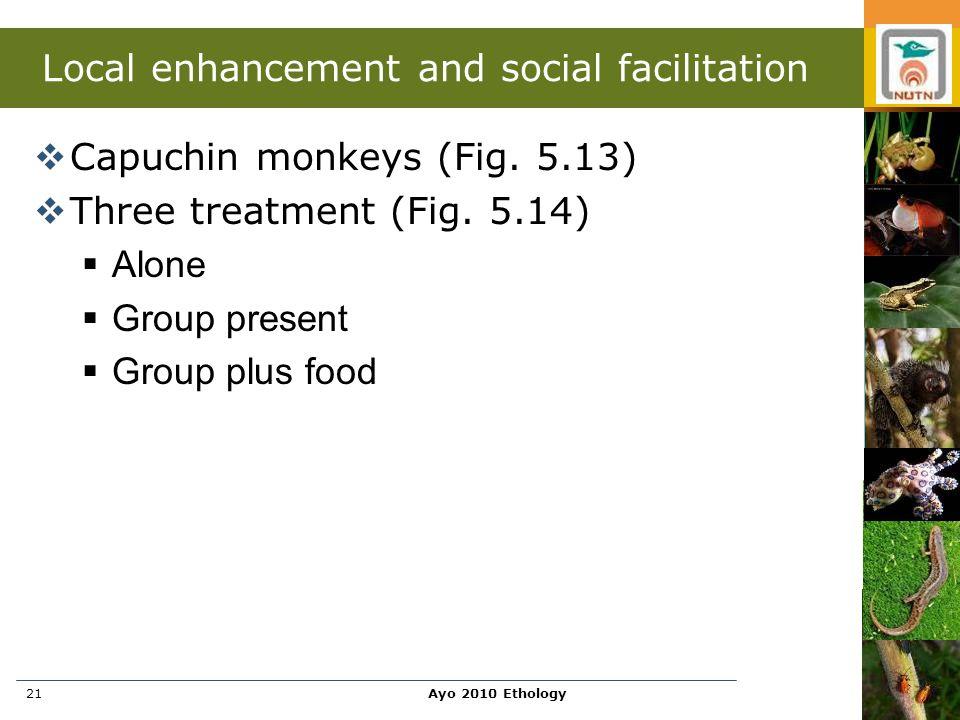 Ayo 2010 Ethology21 Local enhancement and social facilitation  Capuchin monkeys (Fig. 5.13)  Three treatment (Fig. 5.14)  Alone  Group present  G