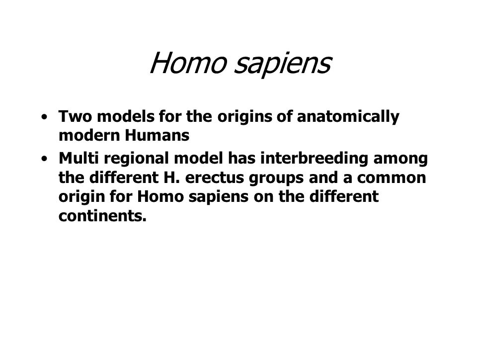 Homo sapiens Two models for the origins of anatomically modern Humans Multi regional model has interbreeding among the different H. erectus groups and