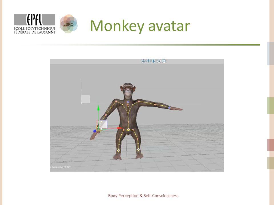 Monkey avatar Body Perception & Self-Consciousness