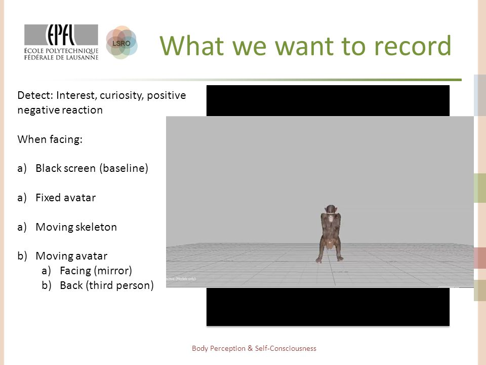 What we want to record Body Perception & Self-Consciousness Detect: Interest, curiosity, positive negative reaction When facing: a)Black screen (baseline) a)Fixed avatar a)Moving skeleton b)Moving avatar a)Facing (mirror) b)Back (third person)