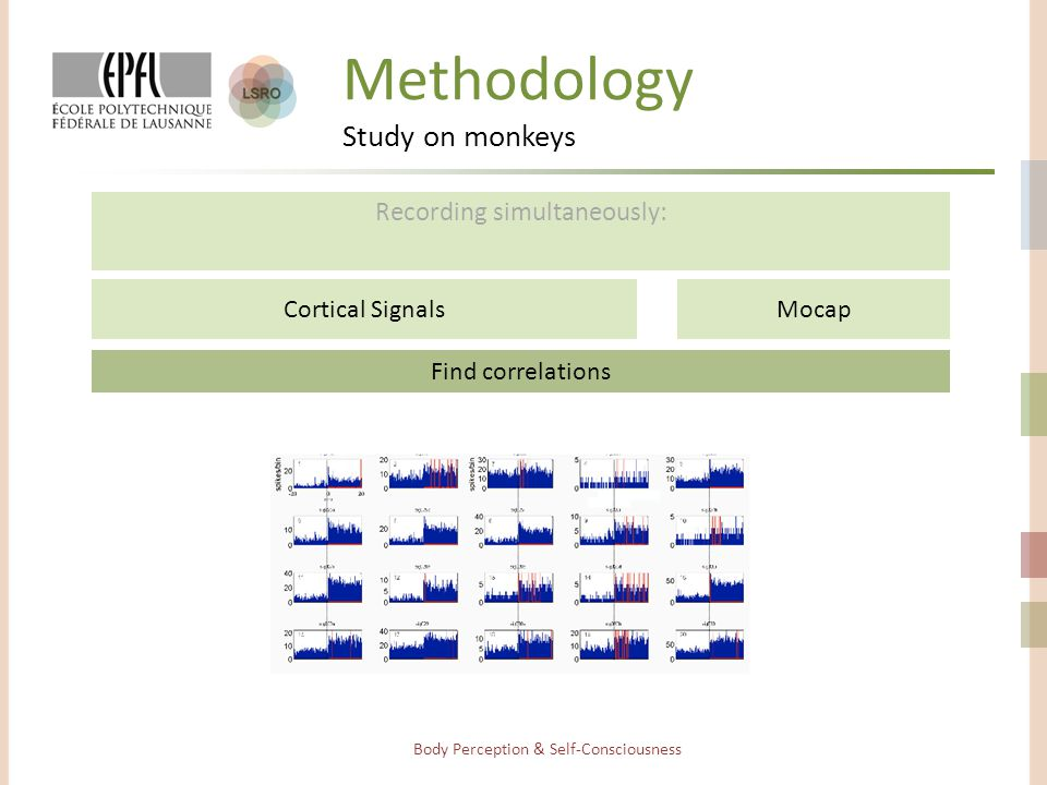 Methodology Study on monkeys Recording simultaneously: Body Perception & Self-Consciousness Find correlations Cortical SignalsMocap