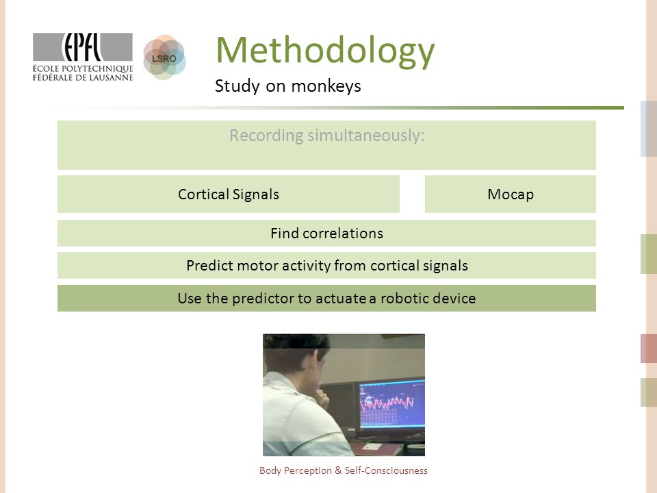 Methodology Study on monkeys Recording simultaneously: Body Perception & Self-Consciousness Find correlations Cortical SignalsMocap Predict motor activity from cortical signals Use the predictor to actuate a robotic device