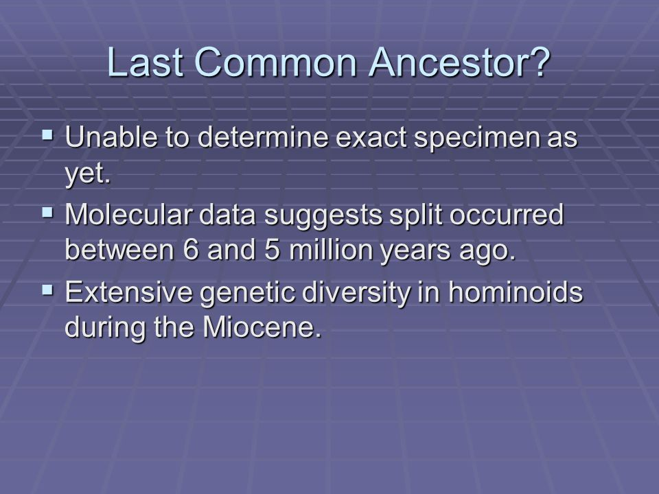 Last Common Ancestor?  Unable to determine exact specimen as yet.  Molecular data suggests split occurred between 6 and 5 million years ago.  Exten