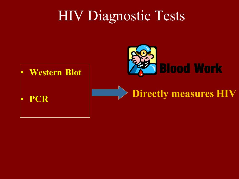 HIV Diagnostic Tests Western Blot PCR Directly measures HIV