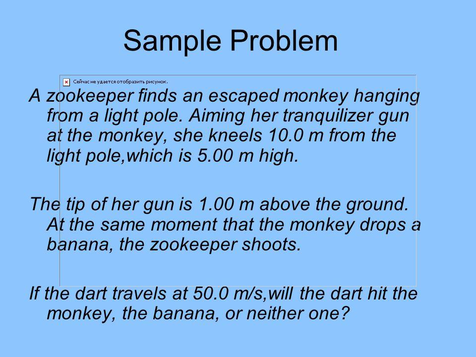 Shoot the Monkey