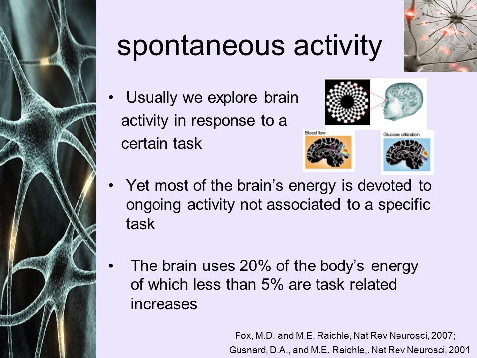 Default monkey brain?