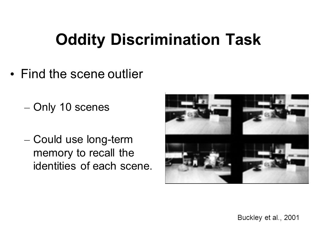 Oddity Discrimination Task Find the scene outlier – Only 10 scenes – Could use long-term memory to recall the identities of each scene. Buckley et al.