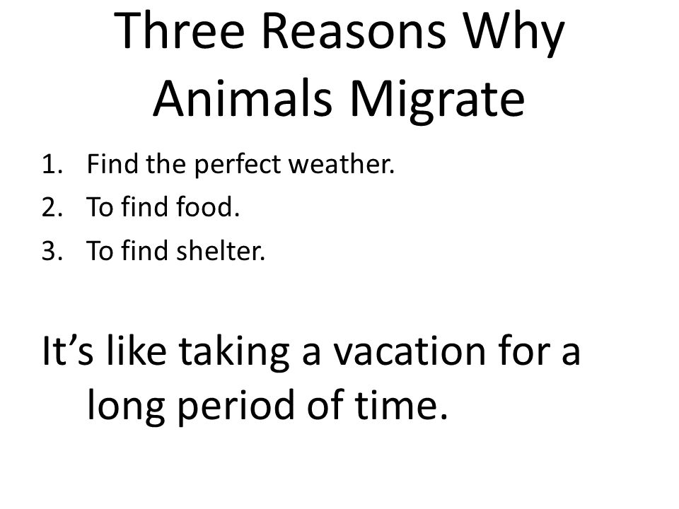 Three Reasons Why Animals Migrate 1.Find the perfect weather. 2.To find food. 3.To find shelter. It's like taking a vacation for a long period of time