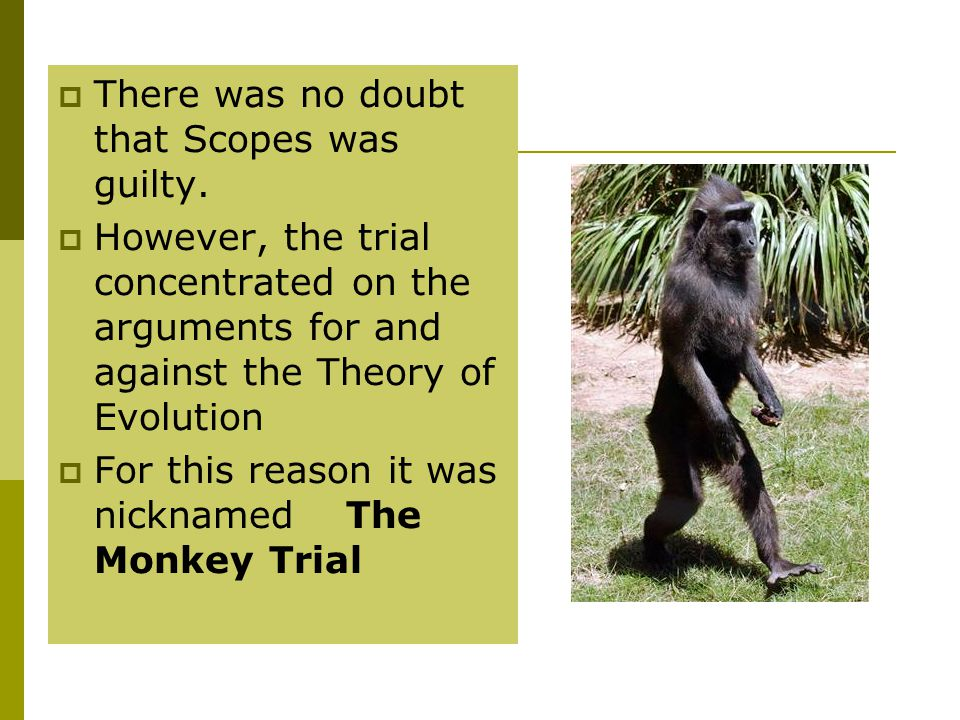  There was no doubt that Scopes was guilty.