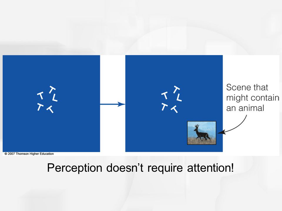 Perception doesn't require attention!