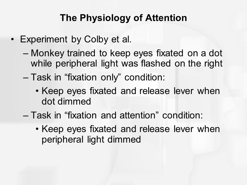 The Physiology of Attention Experiment by Colby et al.