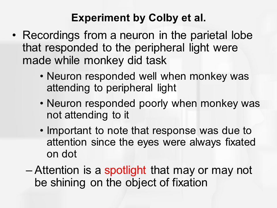 Experiment by Colby et al.
