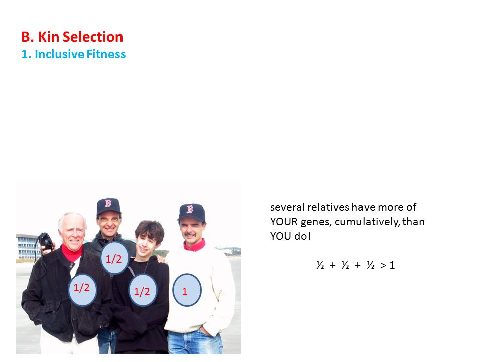 1/2 1 B. Kin Selection 1. Inclusive Fitness
