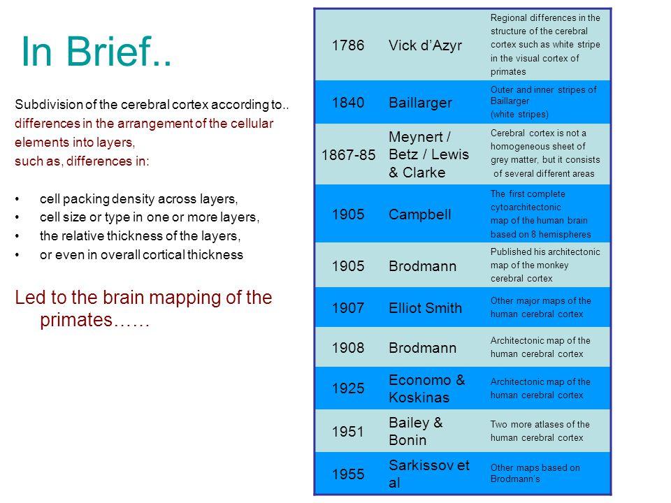 In Brief.. Subdivision of the cerebral cortex according to..