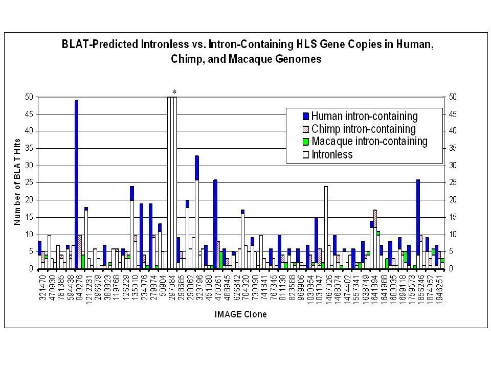 SMA Chr5q13 Williams Beuren Chr7q11.2 Prader-Willi Chr15q11.1 DiGeorge Chr22q11