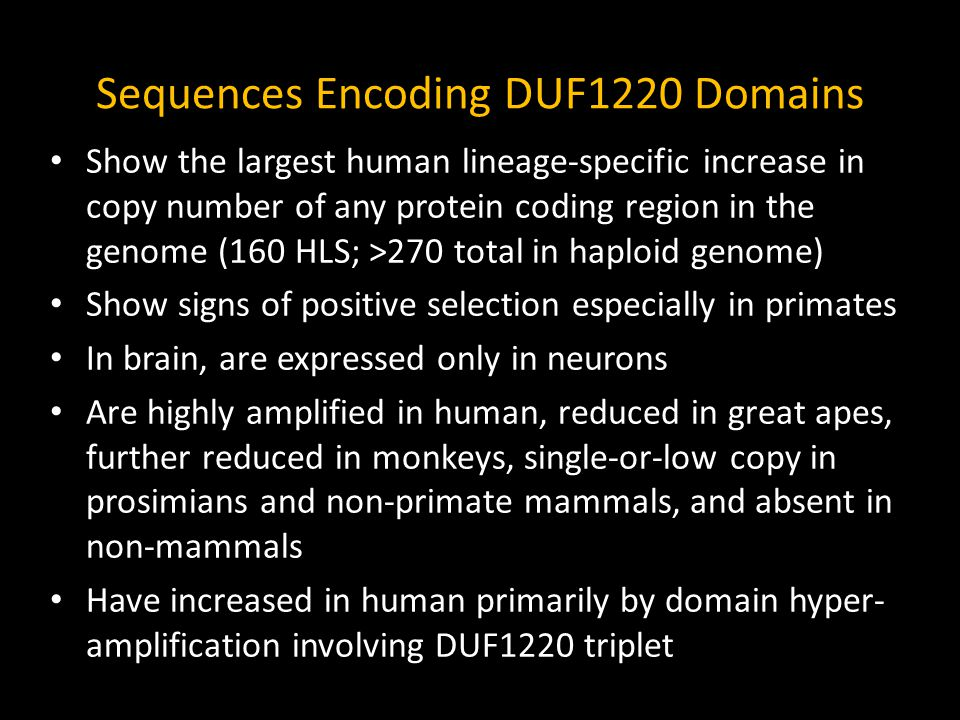Noteworthy DUF1220 Copy Number Totals DUF1220 Copies Total in Human Genome272 Total in Chimp Genome (CLS)125 (23) Total in Last Common Ancestor of Hom