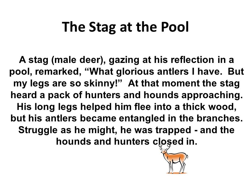 "The Stag at the Pool A stag (male deer), gazing at his reflection in a pool, remarked, ""What glorious antlers I have. But my legs are so skinny!"" At t"