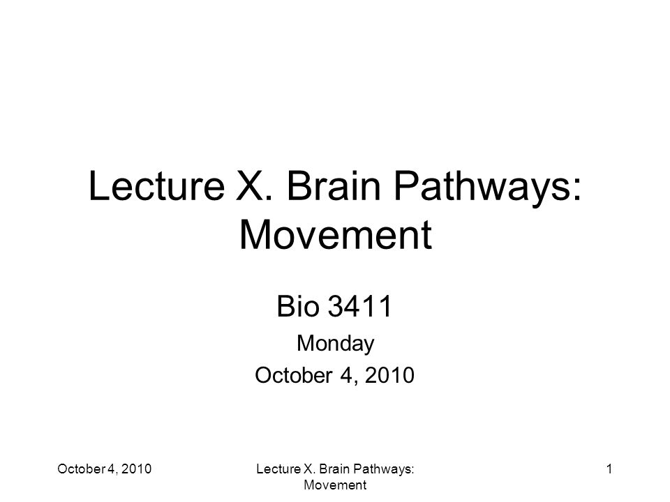 Lecture X. Brain Pathways: Movement Bio 3411 Monday October 4, 2010 1Lecture X.