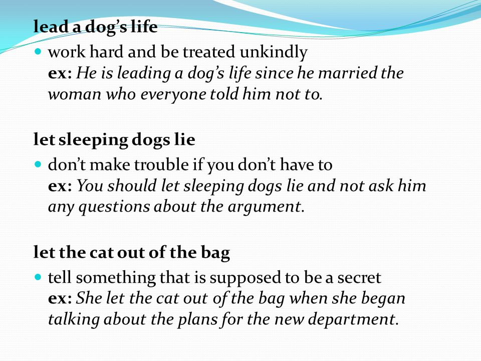 lead a dog's life work hard and be treated unkindly ex: He is leading a dog's life since he married the woman who everyone told him not to. let sleepi