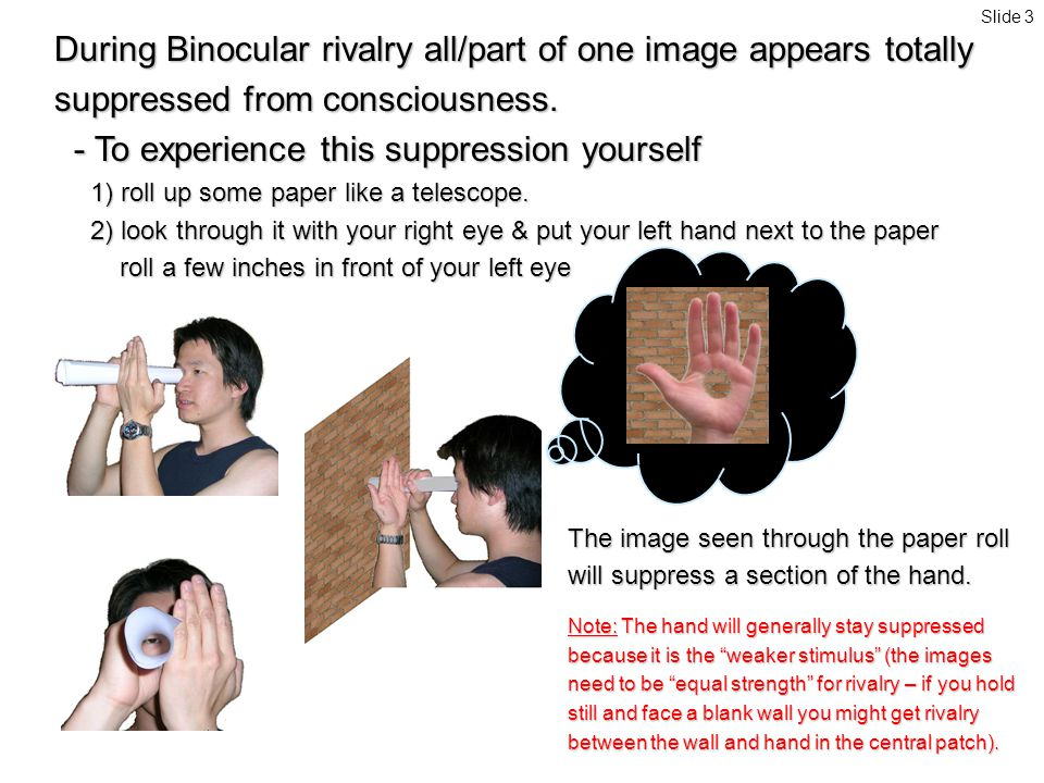 During Binocular rivalry all/part of one image appears totally suppressed from consciousness.