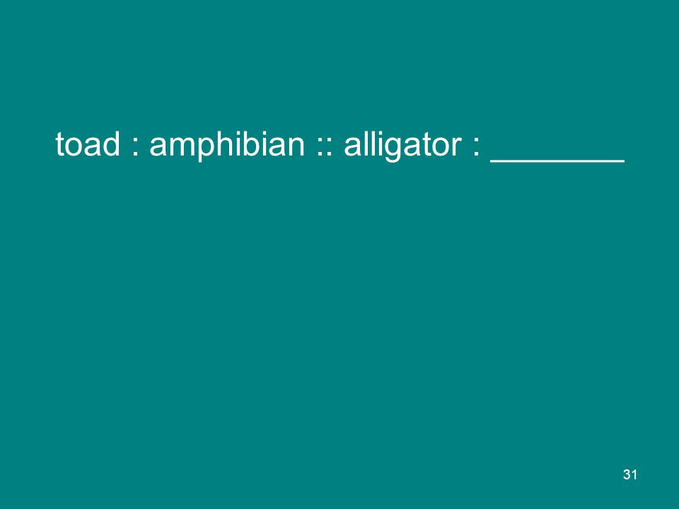 31 toad : amphibian :: alligator : _______