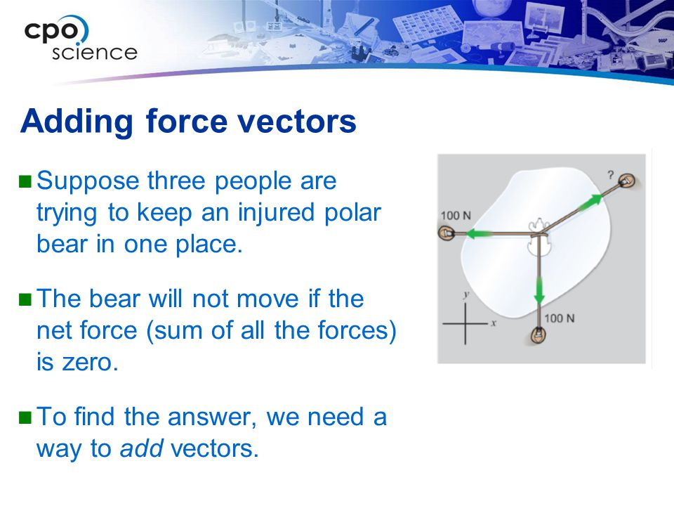 Adding force vectors Suppose three people are trying to keep an injured polar bear in one place.