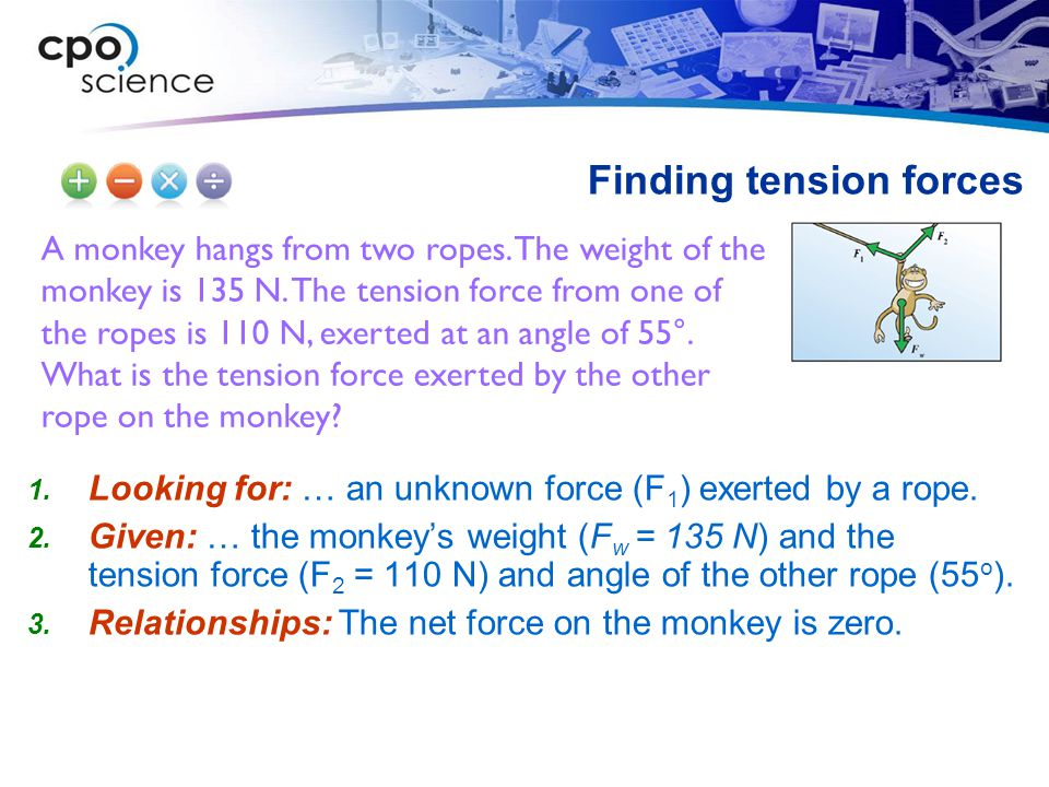 A monkey hangs from two ropes.The weight of the monkey is 135 N.