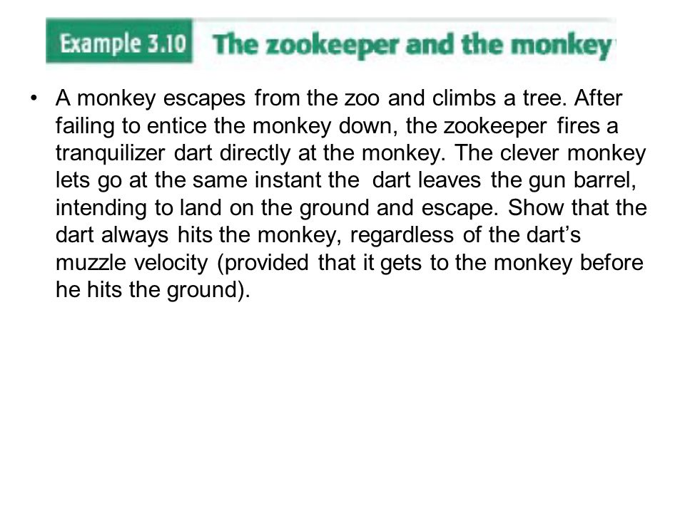 A monkey escapes from the zoo and climbs a tree. After failing to entice the monkey down, the zookeeper fires a tranquilizer dart directly at the monk
