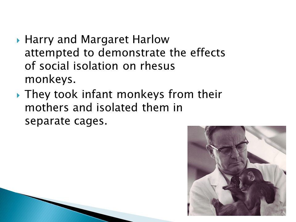  Harry and Margaret Harlow attempted to demonstrate the effects of social isolation on rhesus monkeys.