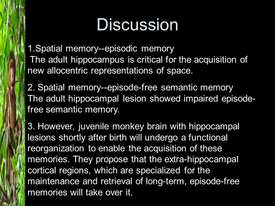 Discussion 1.Spatial memory--episodic memory The adult hippocampus is critical for the acquisition of new allocentric representations of space. 2. Spa