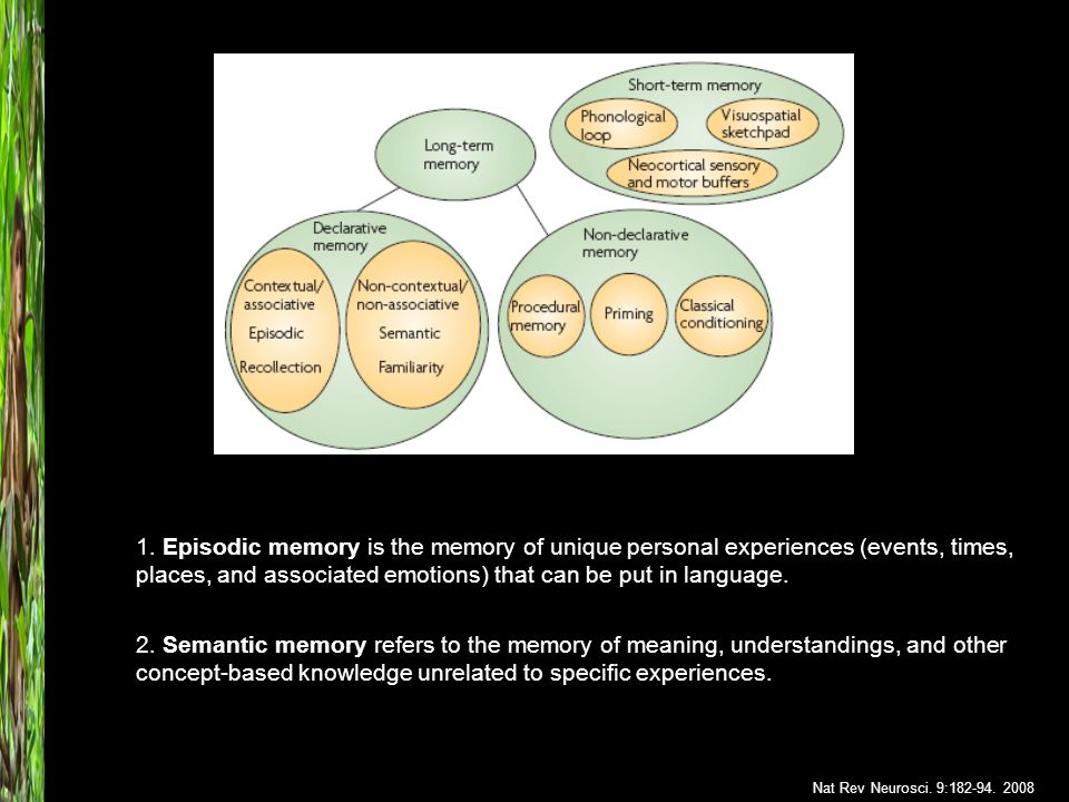 2. Semantic memory refers to the memory of meaning, understandings, and other concept-based knowledge unrelated to specific experiences. 1. Episodic m