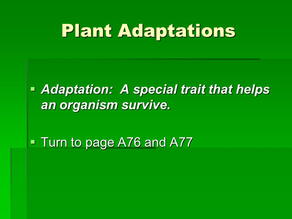 Plant Adaptations  Sundew Plant  Adaptation: Creates a sticky nectar that traps insects and allows the plant to digest the insect as its food source.