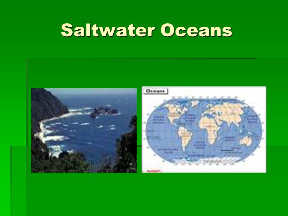 Saltwater Oceans