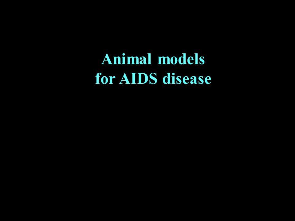 Animal models for AIDS disease