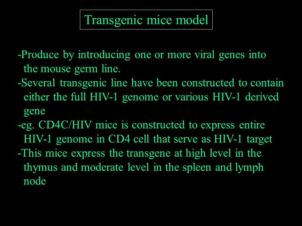 Transgenic mice model -Produce by introducing one or more viral genes into the mouse germ line.
