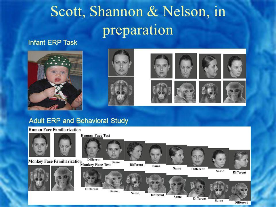 Scott, Shannon & Nelson, in preparation Infant ERP Task Adult ERP and Behavioral Study