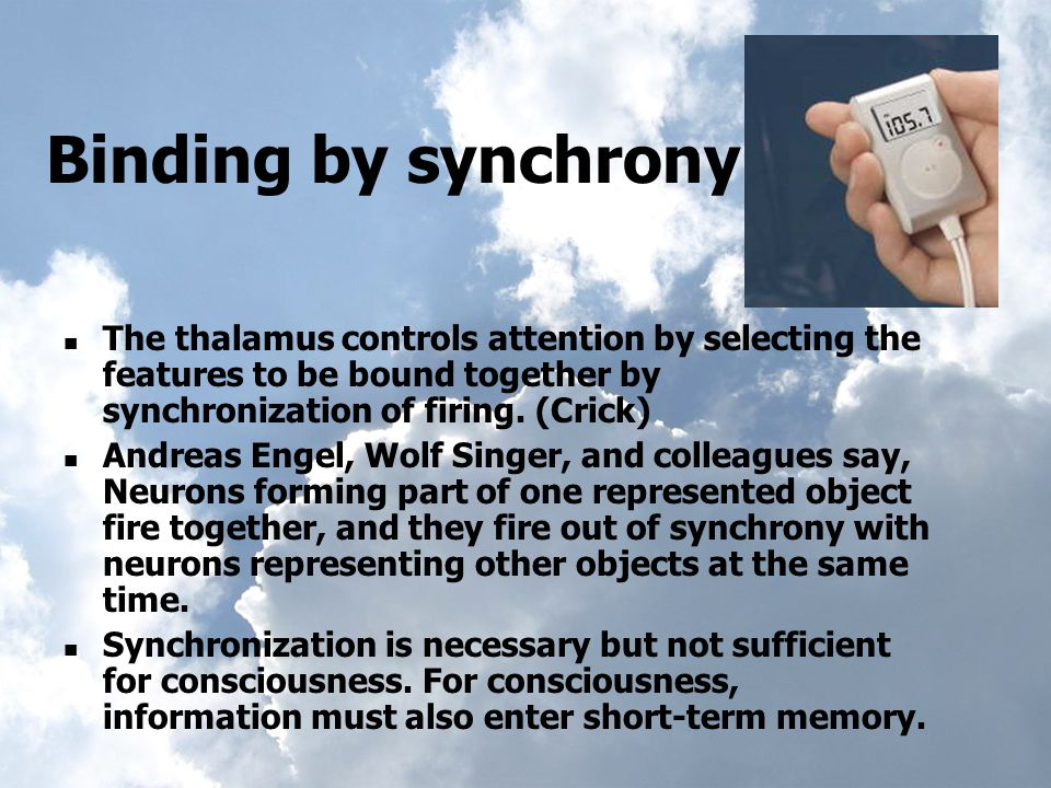 Binding by synchrony The thalamus controls attention by selecting the features to be bound together by synchronization of firing.