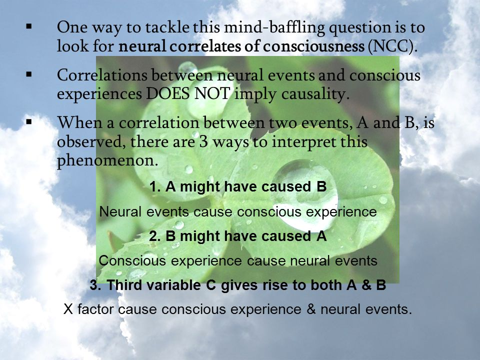  One way to tackle this mind-baffling question is to look for neural correlates of consciousness (NCC).