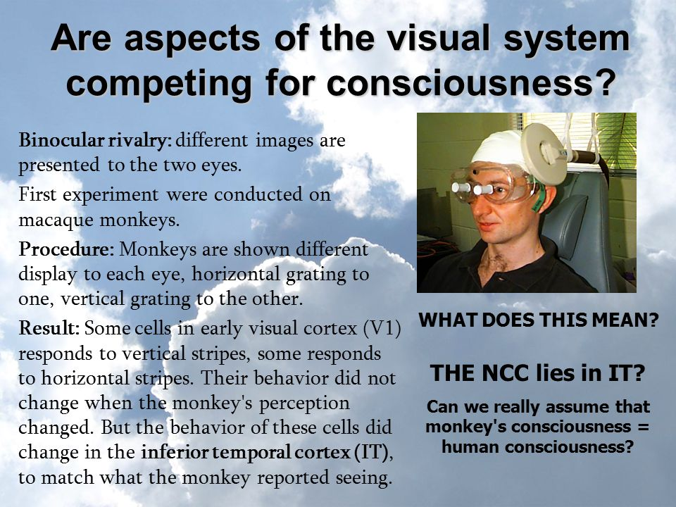 Are aspects of the visual system competing for consciousness.