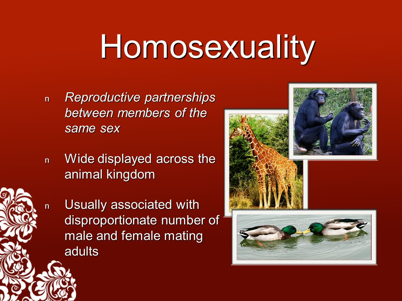 Homosexuality Reproductive partnerships between members of the same sex Reproductive partnerships between members of the same sex Wide displayed across the animal kingdom Wide displayed across the animal kingdom Usually associated with disproportionate number of male and female mating adults Usually associated with disproportionate number of male and female mating adults