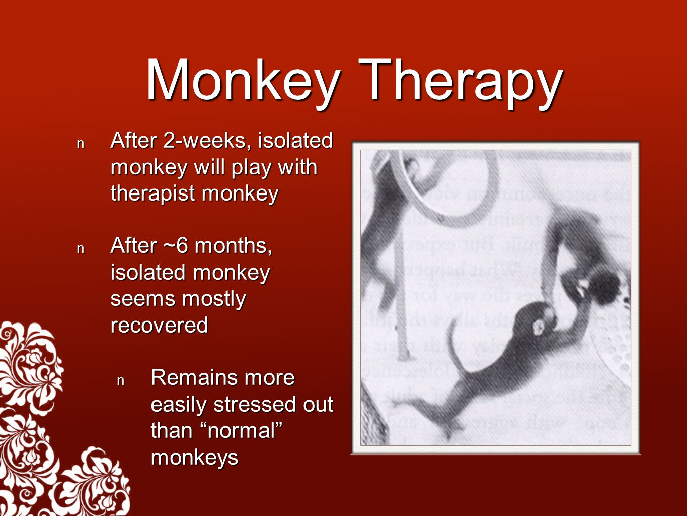 Monkey Therapy After 2-weeks, isolated monkey will play with therapist monkey After 2-weeks, isolated monkey will play with therapist monkey After ~6 months, isolated monkey seems mostly recovered After ~6 months, isolated monkey seems mostly recovered Remains more easily stressed out than normal monkeys Remains more easily stressed out than normal monkeys