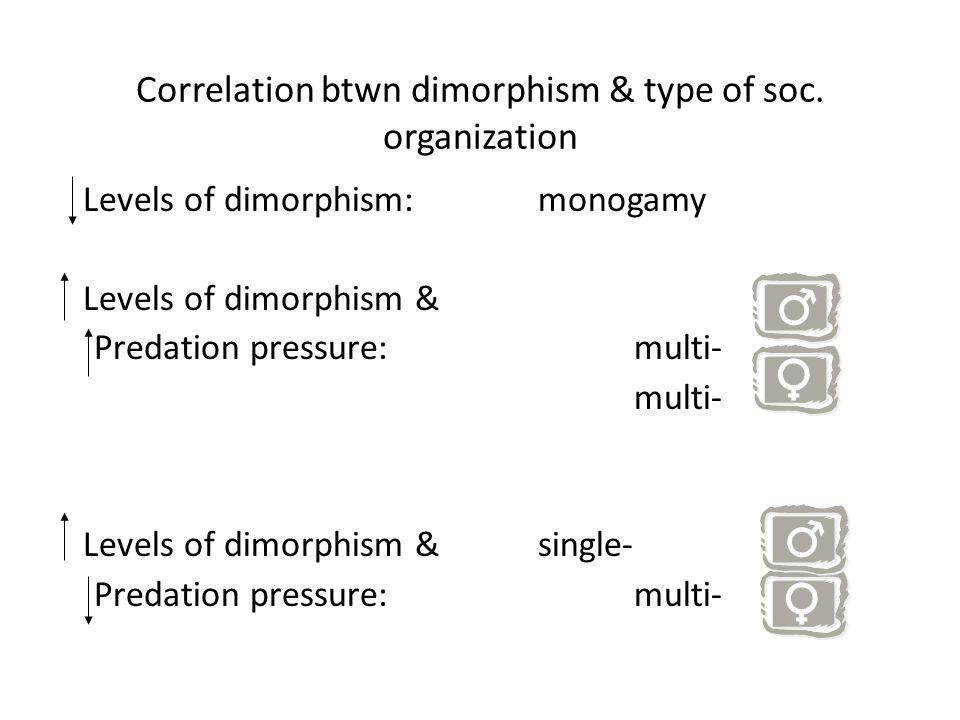 Correlation btwn dimorphism & type of soc.
