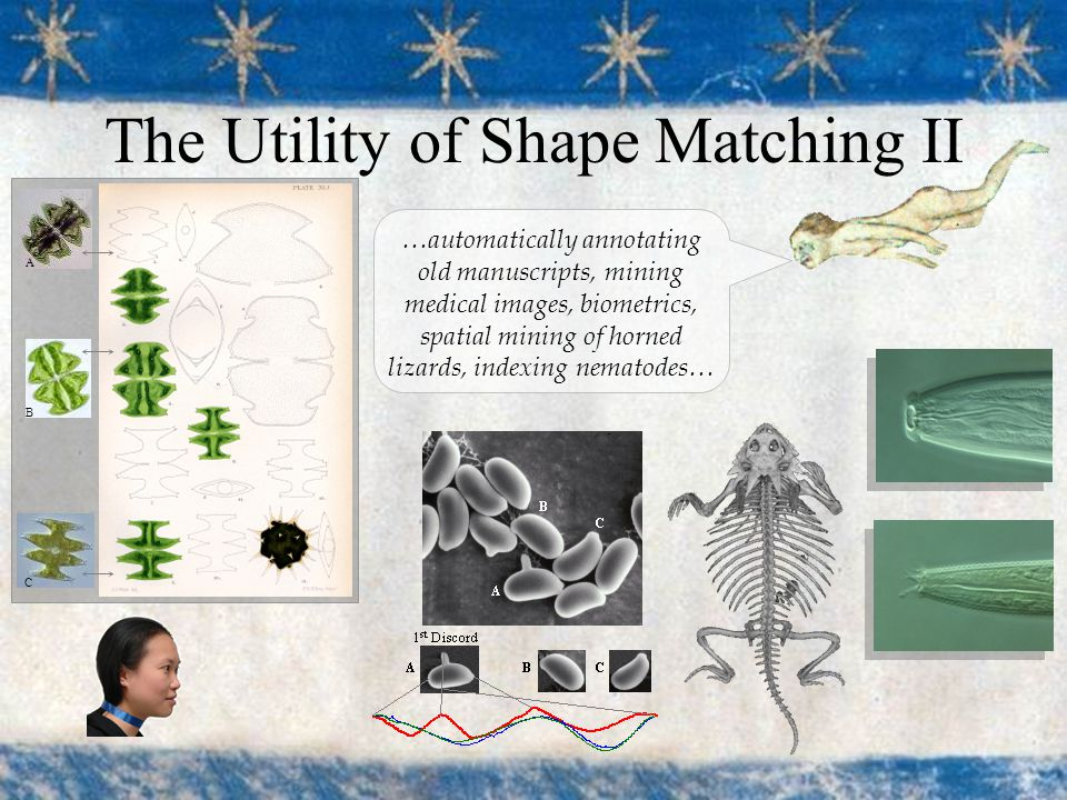 The Utility of Shape Matching II …automatically annotating old manuscripts, mining medical images, biometrics, spatial mining of horned lizards, indexing nematodes… A B C