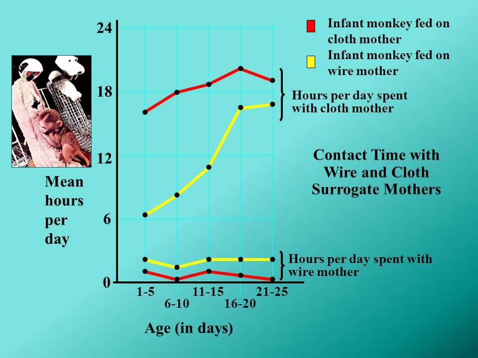 Contact Time with Wire and Cloth Surrogate Mothers 24 0 6 12 18 21-251-5 6-10 11-15 16-20 Age (in days)....................