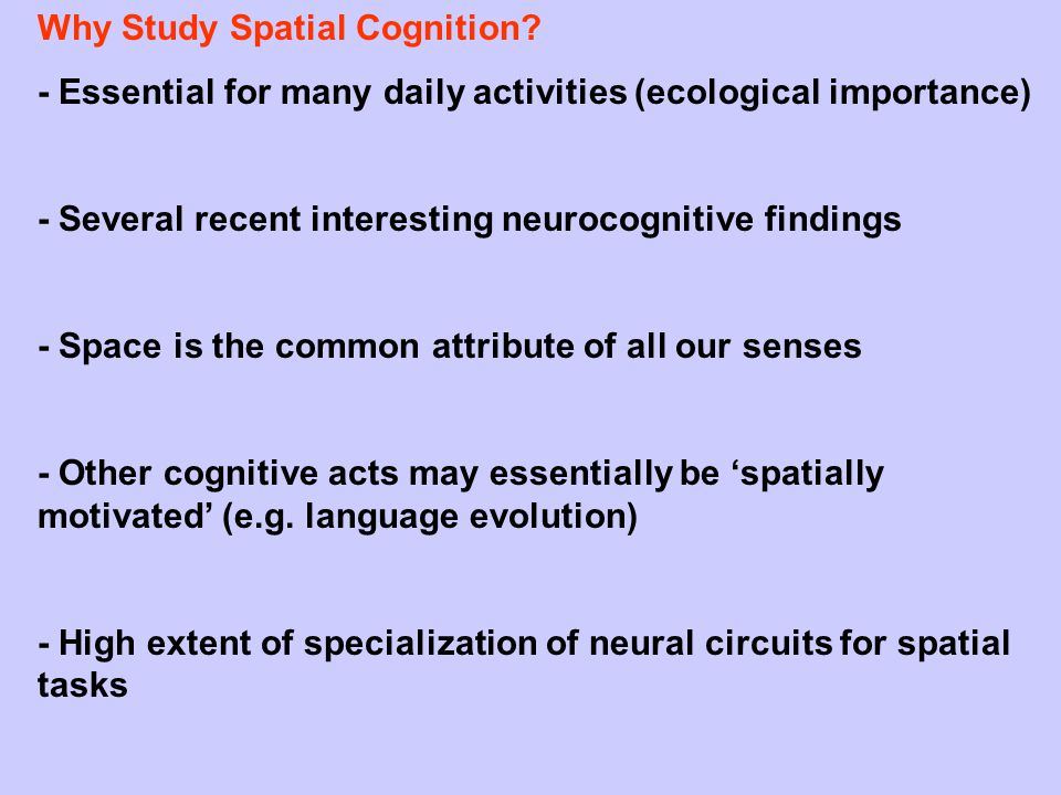 ( Spatial Cognition:= the collection of mental abilities which involve the processing of spatial features of our environment or of complex objects (ranging from perception, attention, motor action to memory).